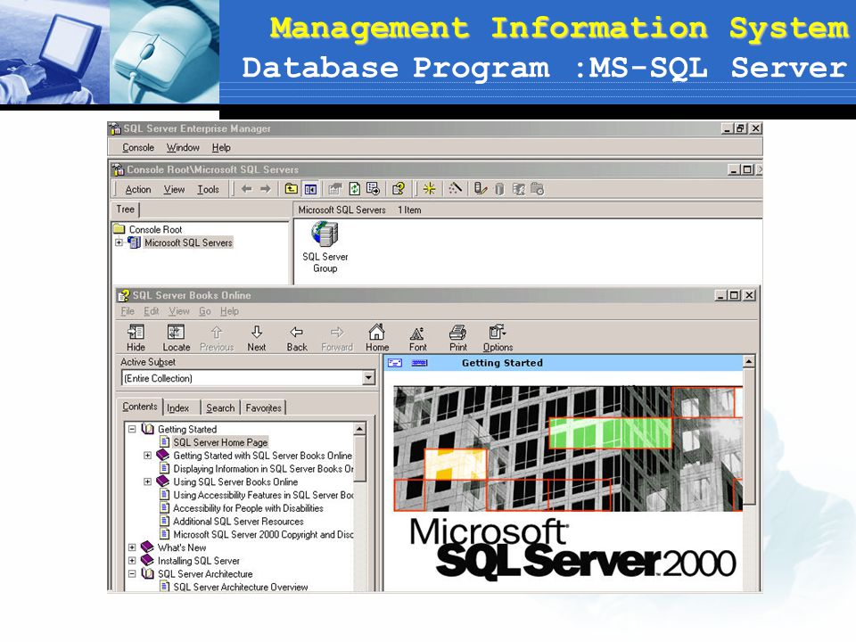 Management Information System Management Information System Database Program :MS-SQL Server