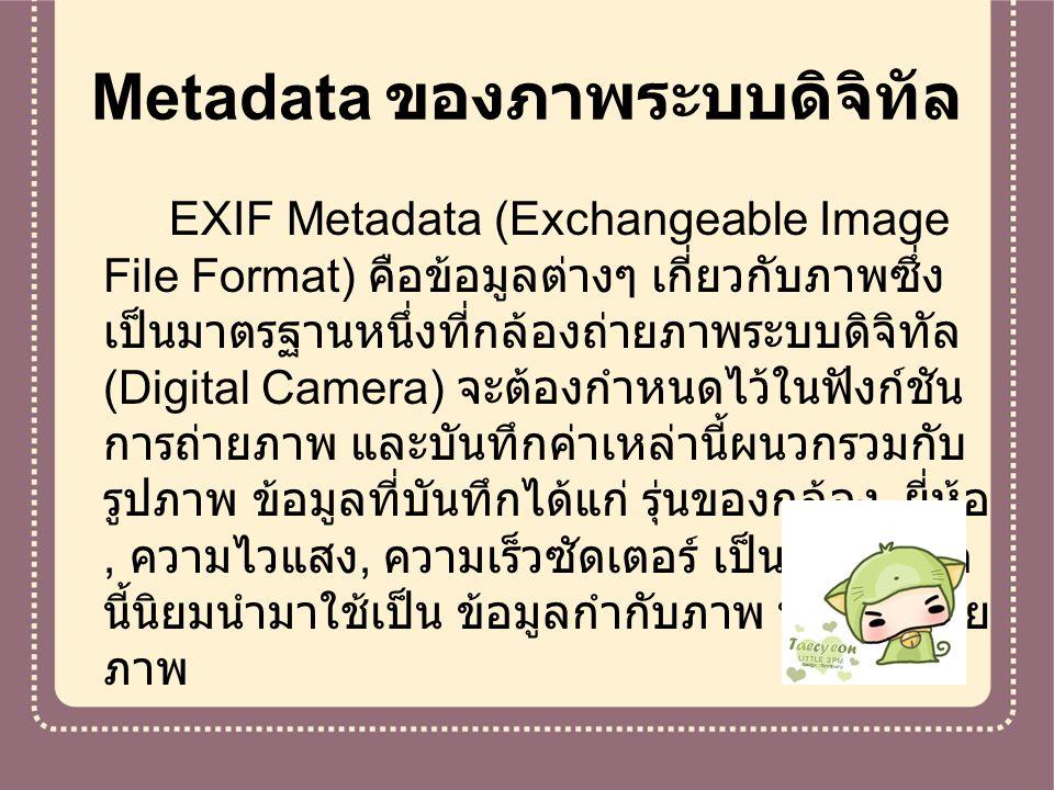 Metadata ของภาพระบบดิจิทัล EXIF Metadata (Exchangeable Image File Format) คือข้อมูลต่างๆ เกี่ยวกับภาพซึ่ง เป็นมาตรฐานหนึ่งที่กล้องถ่ายภาพระบบดิจิทัล (