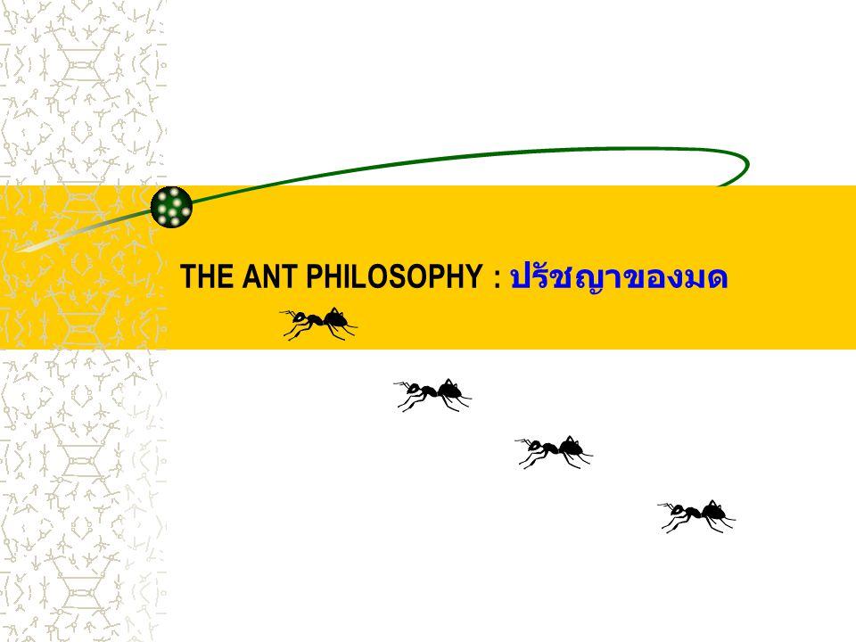THE ANT PHILOSOPHY : ปรัชญาของมด