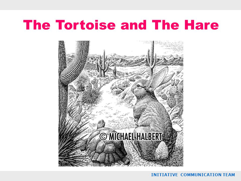 The Tortoise and The Hare INITIATIVE COMMUNICATION TEAM