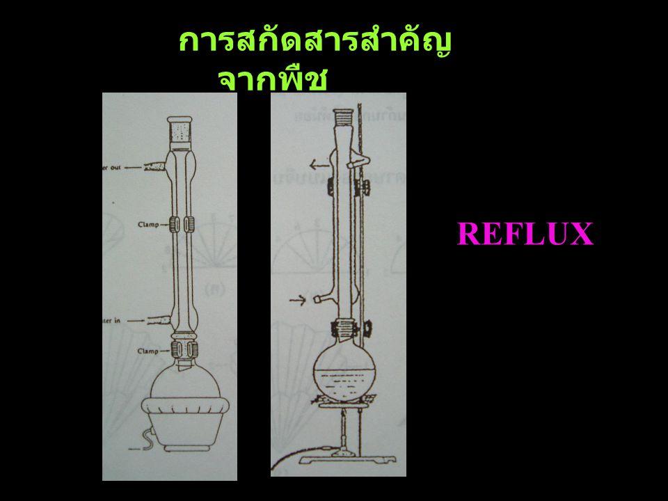 การสกัดสารสำคัญ จากพืช REFLUX
