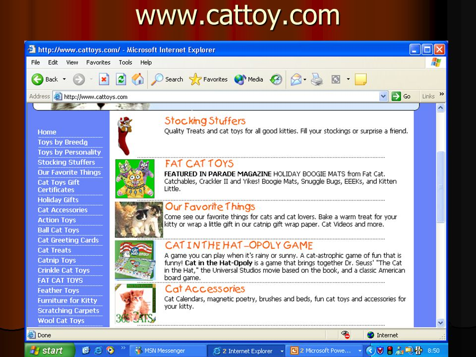 www.cattoy.com