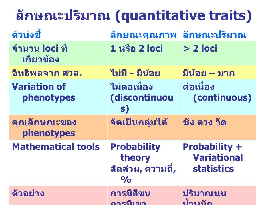 ลักษณะปริมาณ (quantitative traits) ตัวบ่งชี้ลักษณะคุณภาพลักษณะปริมาณ จำนวน loci ที่ เกี่ยวข้อง 1 หรือ 2 loci > 2 loci อิทธิพลจาก สวล. ไม่มี - มีน้อยมี