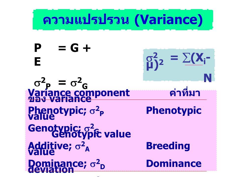ความแปรปรวน (Variance) P = G + E  2 P =  2 G +  2 E  2 =  (X i - µ) 2 N Variance component ค่าที่มา ของ variance Phenotypic;  2 P Phenotypic val