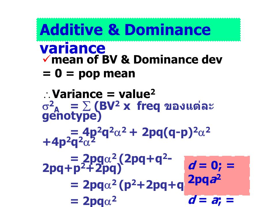 Additive & Dominance variance mean of BV & Dominance dev = 0 = pop mean  Variance = value 2  2 A =  (BV 2 x freq ของแต่ละ genotype) = 4p 2 q 2  2