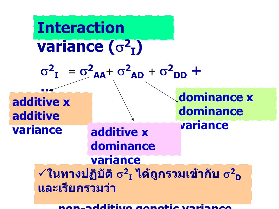 Interaction variance (  2 I )  2 I =  2 AA +  2 AD +  2 DD + … additive x additive variance dominance x dominance variance additive x dominance v