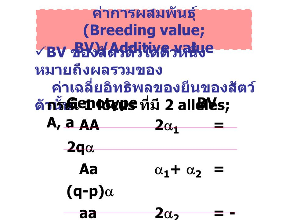 Interaction variance (  2 I )  2 I =  2 AA +  2 AD +  2 DD + … additive x additive variance dominance x dominance variance additive x dominance variance ในทางปฏิบัติ  2 I ได้ถูกรวมเข้ากับ  2 D และเรียกรวมว่า non-additive genetic variance
