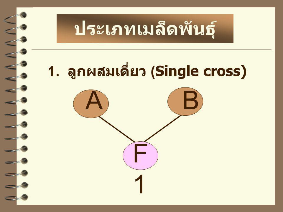 2. ลูกผสมสามทาง (Three way cross) ประเภทเมล็ดพันธุ์ ลูกผสม F1F1 AB C F2F2