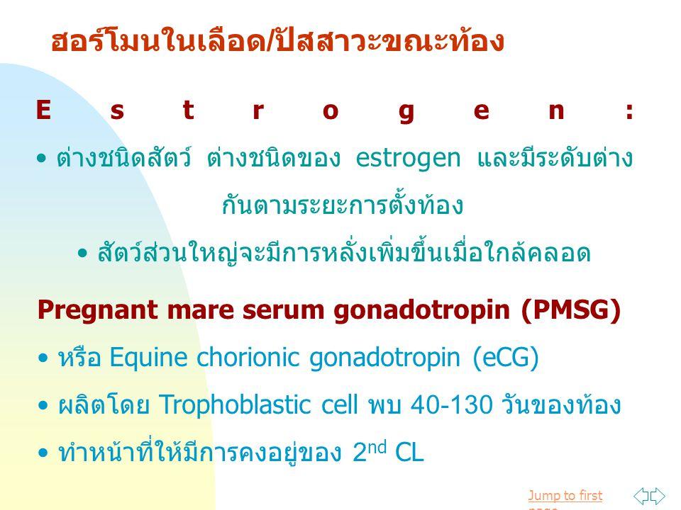 Jump to first page ฮอร์โมนในเลือด/ปัสสาวะขณะท้อง Estrogen: ต่างชนิดสัตว์ ต่างชนิดของ estrogen และมีระดับต่าง กันตามระยะการตั้งท้อง สัตว์ส่วนใหญ่จะมีการหลั่งเพิ่มขึ้นเมื่อใกล้คลอด Pregnant mare serum gonadotropin (PMSG) หรือ Equine chorionic gonadotropin (eCG) ผลิตโดย Trophoblastic cell พบ 40-130 วันของท้อง ทำหน้าที่ให้มีการคงอยู่ของ 2 nd CL