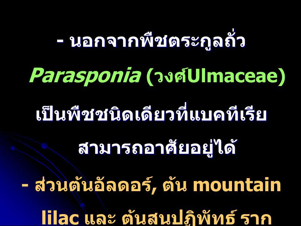 - นอกจากพืชตระกูลถั่ว - นอกจากพืชตระกูลถั่ว Parasponia ( วงศ์ Ulmaceae) เป็นพืชชนิดเดียวที่แบคทีเรีย สามารถอาศัยอยู่ได้ - ส่วนต้นอัลดอร์, ต้น mountain
