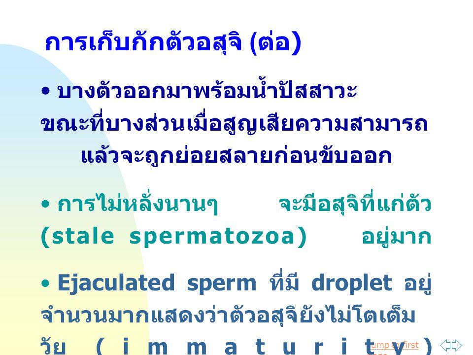 Jump to first page มีความสำคัญมากในการผสมแบบ ธรรมชาติ เพราะเป็นทั้งตัวนำ (carrier) และตัวป้องกัน (protector) แก่ตัวอสุจิ โดยเฉพาะพวกที่หลั่งที่ vagina เช่น โค และแกะ ส่วนม้าและสุกรซึ่งหลั่งที่มดลูก seminal plasma อาจมีความสำคัญ น้อยลง ประกอบด้วยสารที่เป็นแหล่งพลังงาน เช่น fructose, Sorbitol, Ergothioneine, Glycerylphosphorylcholine (GPC), hormone (androgen, PG, FSH & LH), peptide, antimicrobial (seminal plasmin) Seminal plasma