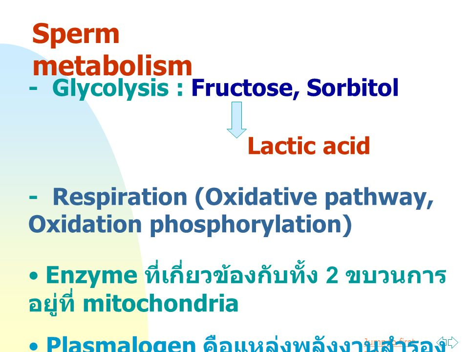 Jump to first page Sorbitol O2O2 Sorbitol dehydrogenase Fructose phosphate GPC Enz.
