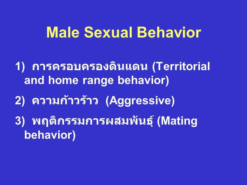 Male Sexual Behavior 1) การครอบครองดินแดน (Territorial and home range behavior) 2) ความก้าวร้าว (Aggressive) 3) พฤติกรรมการผสมพันธุ์ (Mating behavior)