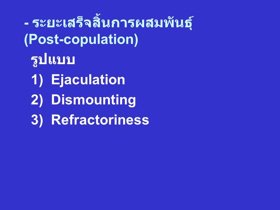 - ระยะเสร็จสิ้นการผสมพันธุ์ (Post-copulation) รูปแบบ 1) Ejaculation 2) Dismounting 3) Refractoriness