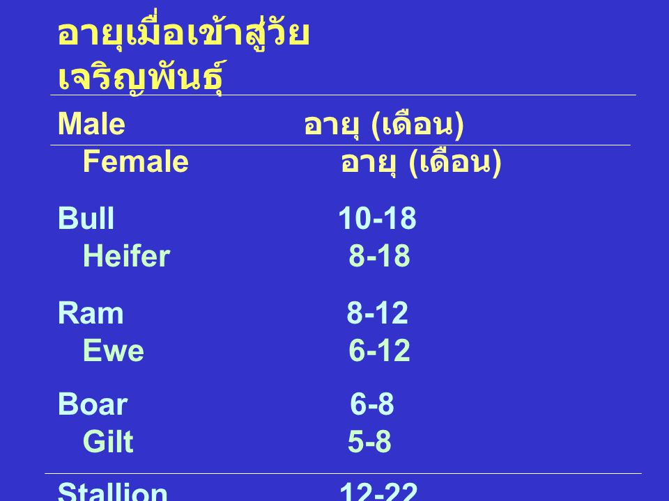 อายุเมื่อเข้าสู่วัย เจริญพันธุ์ Male อายุ ( เดือน ) Female อายุ ( เดือน ) Bull 10-18 Heifer 8-18 Ram 8-12 Ewe 6-12 Boar 6-8 Gilt 5-8 Stallion 12-22 Fi