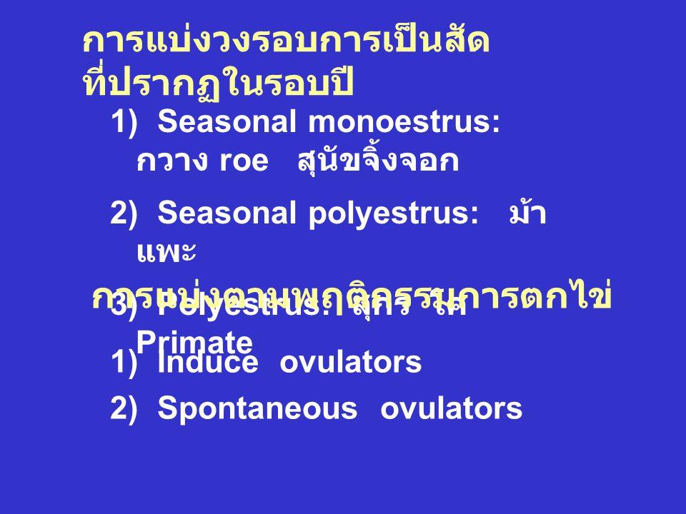 การแบ่งตามช่วงต่างๆ ของ วงรอบการเป็นสัด 1) แบ่งตามสภาวะการควบคุมโดย เนื้อเยื่อที่สร้างฮอร์โมน : Follicular phase และ Luteal phase 2) แบ่งตามลักษณะที่ปรากฏในวงรอบ การเป็นสัด โค แพะ แกะ สุกร 2.1) Proestrus 3-4 2-3 2-3 3-4 วัน 2.2) Estrus 12-18 30-40 24-36 48-72 ชม.