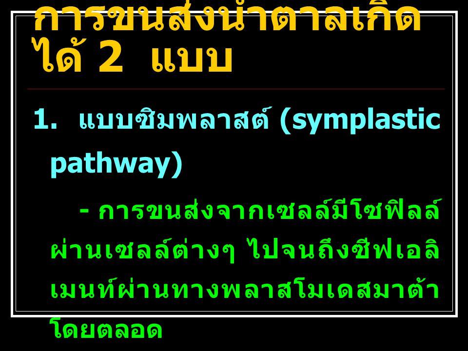 ที่มา :http://4e.plantphys.net/image.php?id=144