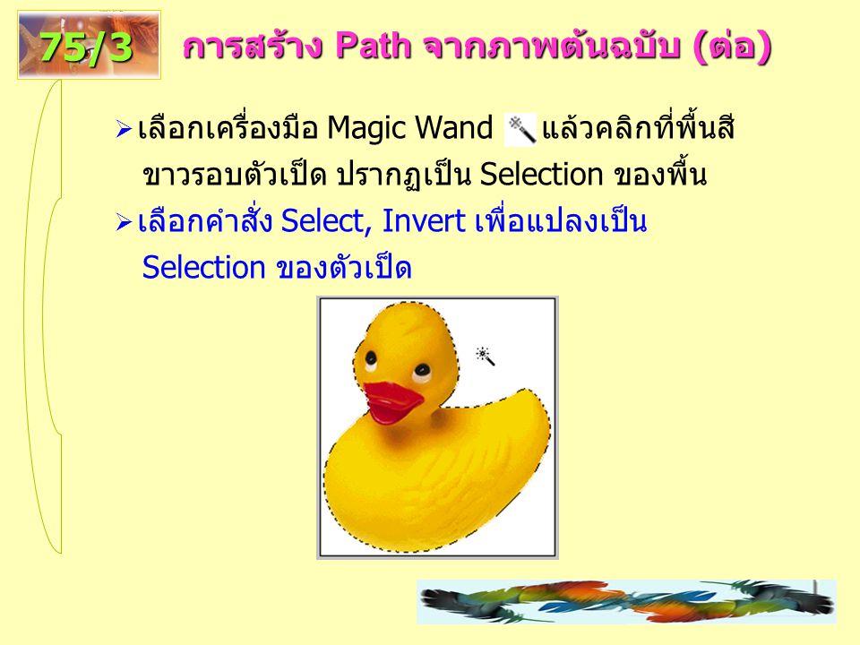 การสร้าง Path จากภาพต้นฉบับ ( ต่อ ) 75/3  เลือกเครื่องมือ Magic Wand แล้วคลิกที่พื้นสี ขาวรอบตัวเป็ด ปรากฏเป็น Selection ของพื้น  เลือกคำสั่ง Select, Invert เพื่อแปลงเป็น Selection ของตัวเป็ด