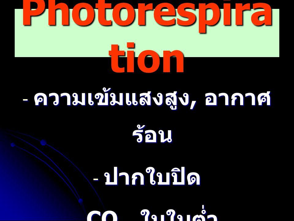 Photorespira tion - ความเข้มแสงสูง, อากาศ ร้อน - ปากใบปิด - CO 2 ในใบต่ำ