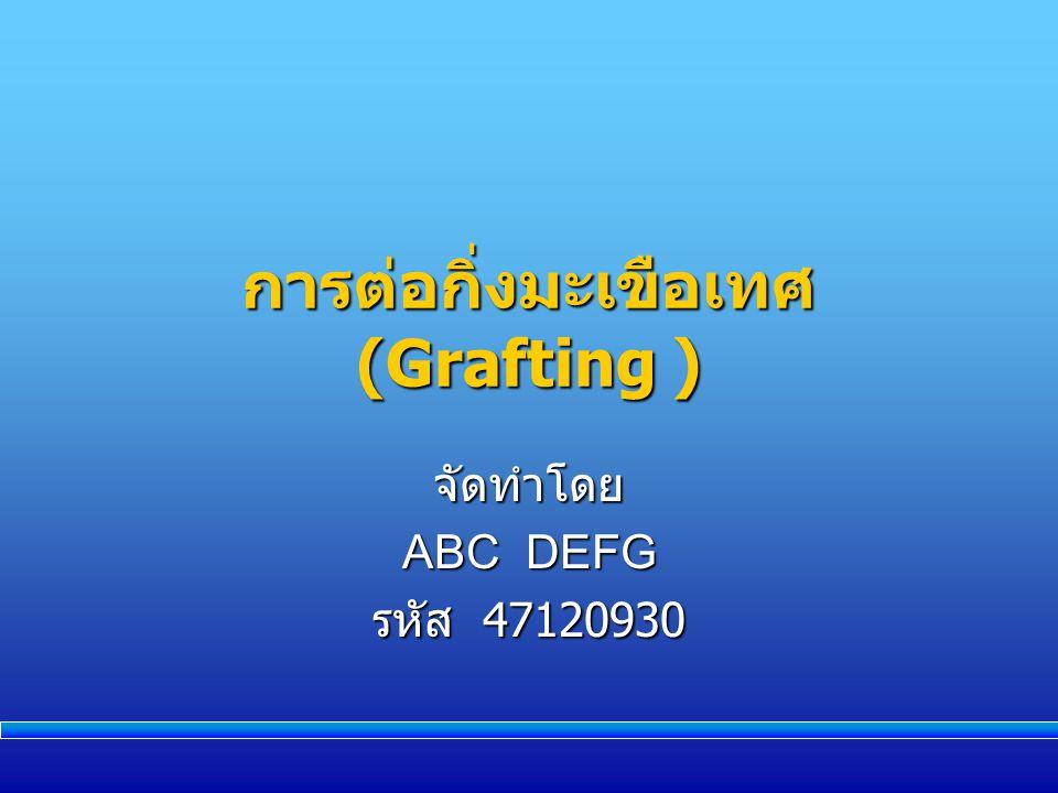การต่อกิ่งมะเขือเทศ (Grafting ) จัดทำโดย ABC DEFG รหัส 47120930