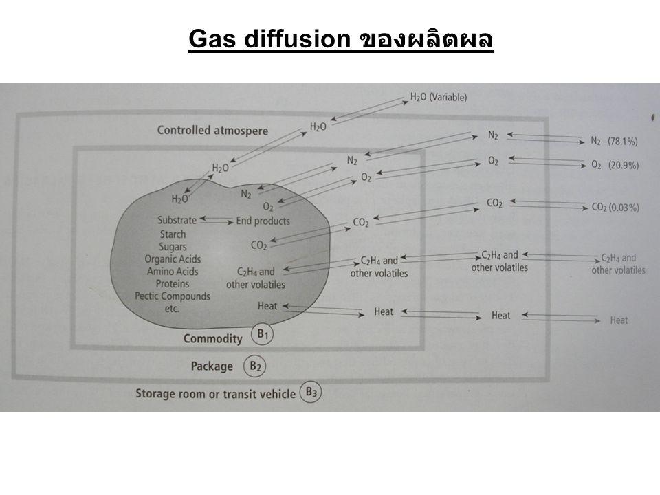 Gas diffusion ของผลิตผล