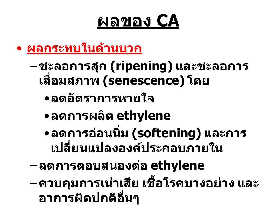 ผลของ CA ผลกระทบในด้านบวก – ชะลอการสุก (ripening) และชะลอการ เสื่อมสภาพ (senescence) โดย ลดอัตราการหายใจ ลดการผลิต ethylene ลดการอ่อนนิ่ม (softening)