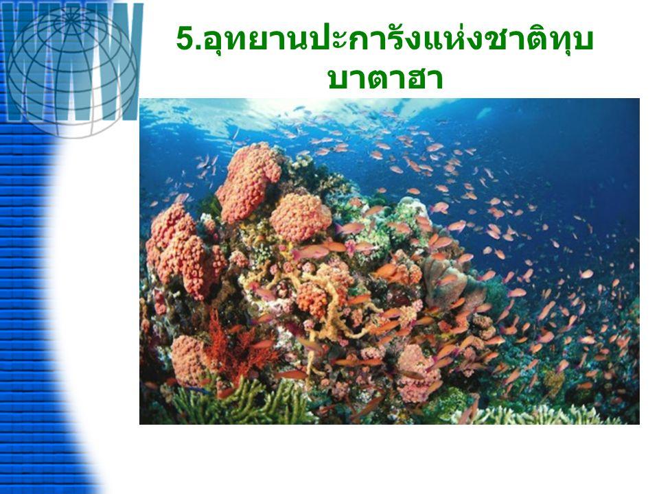 ประเทศมาเลเซีย 1. อุทยานแห่งชาติกุนุงมูลู
