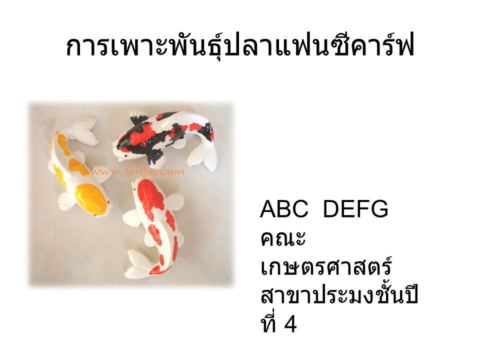 การเพาะพันธุ์ปลาแฟนซีคาร์ฟ ABC DEFG คณะ เกษตรศาสตร์ สาขาประมงชั้นปี ที่ 4
