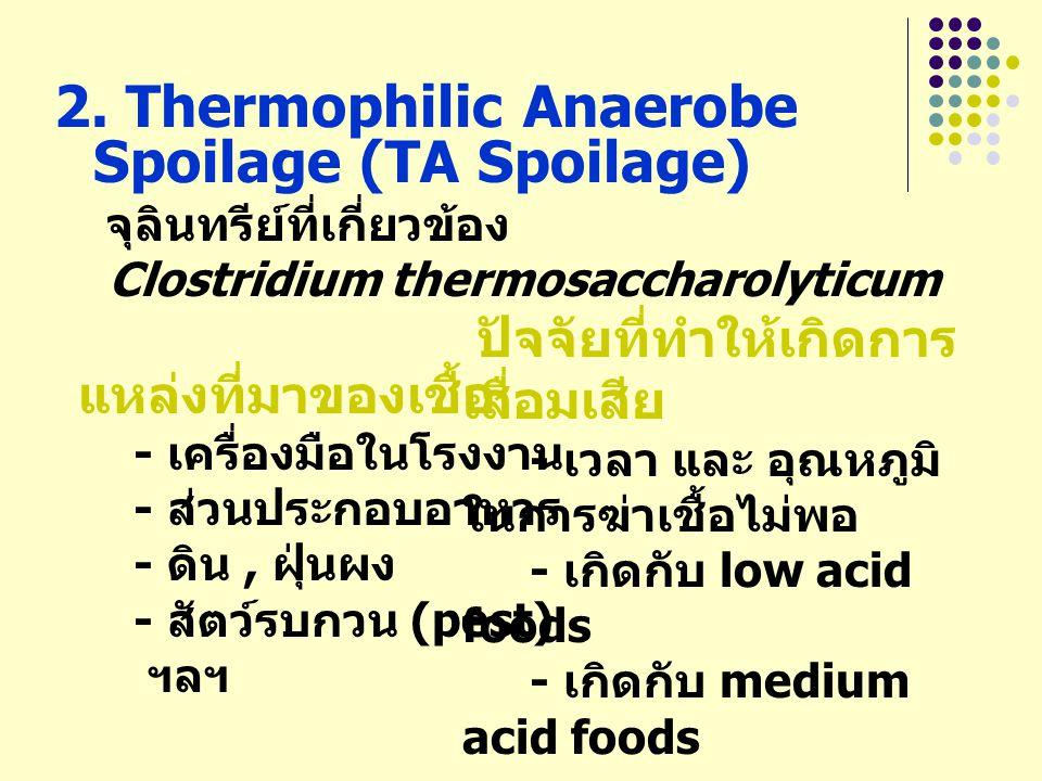 2. Thermophilic Anaerobe Spoilage (TA Spoilage) จุลินทรีย์ที่เกี่ยวข้อง Clostridium thermosaccharolyticum แหล่งที่มาของเชื้อ - เครื่องมือในโรงงาน - ส่