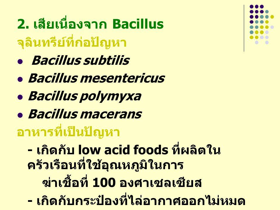 2. เสียเนื่องจาก Bacillus จุลินทรีย์ที่ก่อปัญหา Bacillus subtilis Bacillus mesentericus Bacillus polymyxa Bacillus macerans อาหารที่เป็นปัญหา - เกิดกั