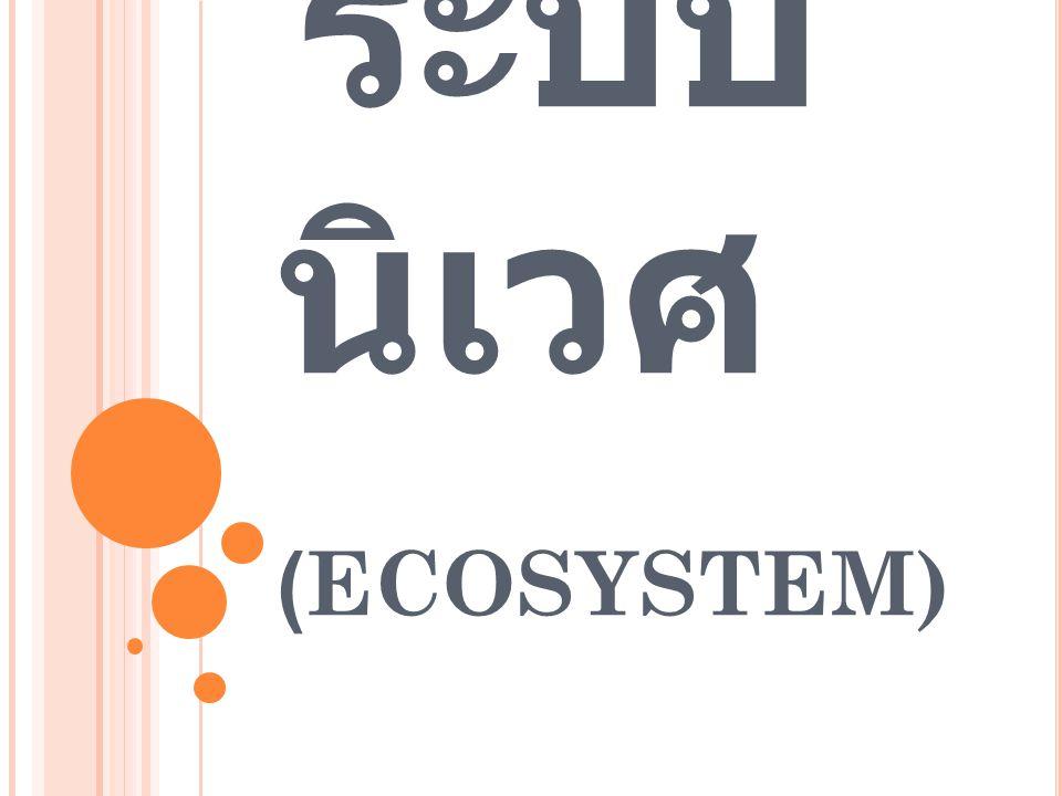 ระบบ นิเวศ (ECOSYSTEM)