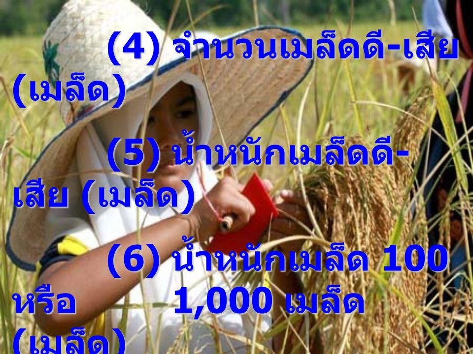 (4) จำนวนเมล็ดดี - เสีย ( เมล็ด ) (5) น้ำหนักเมล็ดดี - เสีย ( เมล็ด ) (6) น้ำหนักเมล็ด 100 หรือ 1,000 เมล็ด ( เมล็ด ) (7) ผลผลิตในพื้นที่ เก็บเกี่ยว 2