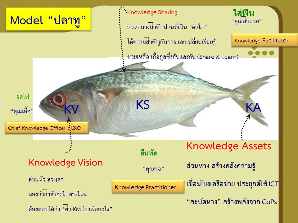 Tuna Model (Thai-UNAids Model) Knowledge Vision (KV) เป็นส่วนที่ต้องตอบให้ได้ว่าทำการจัดการ ความรู้ไปเพื่ออะไร Knowledge Sharing (KS) เป็นส่วนที่สำคัญมากเพราะทำให้เกิดการ แลกเปลี่ยนเรียนรู้ผ่านเวทีจริง และเวทีเสมือนเช่นผ่นเครือข่าย Internet Knowledge Assets (KA) เป็นส่วนขุมความรู้ที่ทำให้มีการนำความรู้ไป ใช้งานและมีการต่อยอดยกระดับขึ้นไปเรื่อย ๆ ดร.