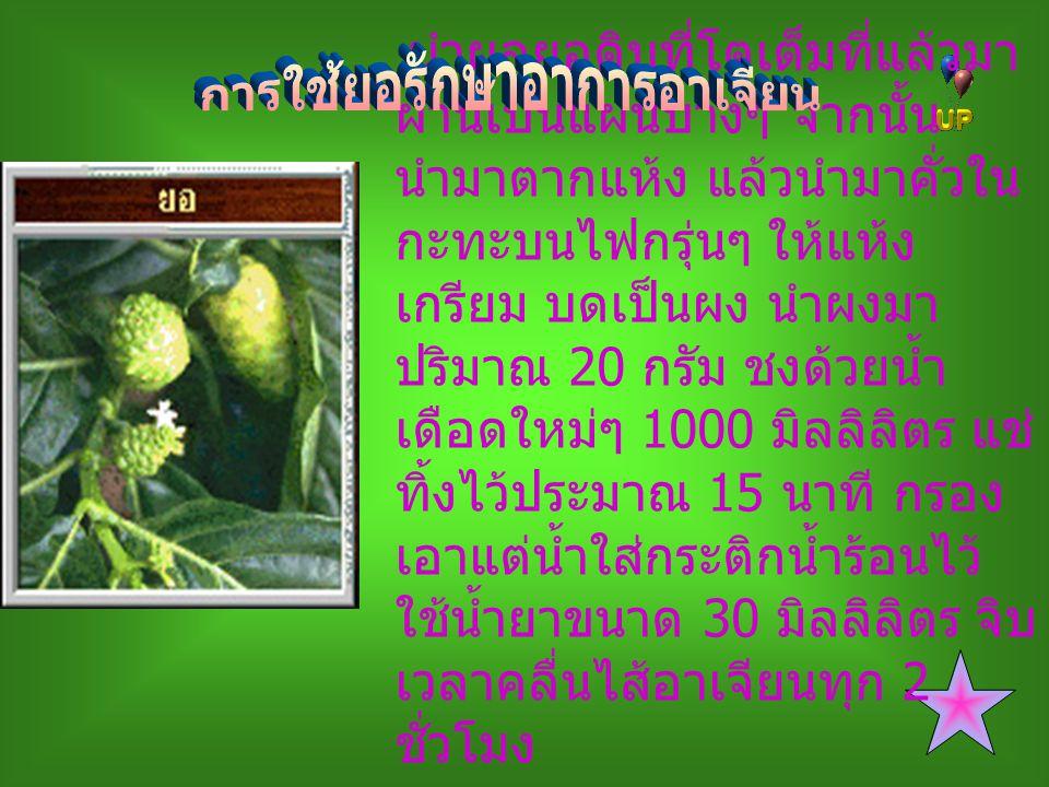 1.ใช้ดอก 2-3 ช่อ ต้มกินกับน้ำพริก 2.