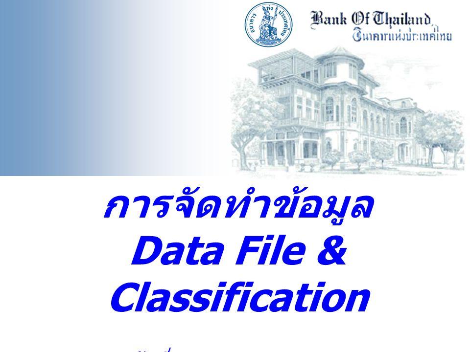 การจัดทำข้อมูล Data File & Classification วันที่ 15 พฤษภาคม 2551