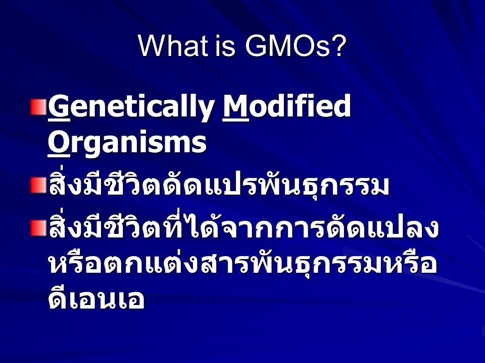 What is GMOs? Genetically Modified Organisms สิ่งมีชีวิตดัดแปรพันธุกรรม สิ่งมีชีวิตที่ได้จากการดัดแปลง หรือตกแต่งสารพันธุกรรมหรือ ดีเอนเอ