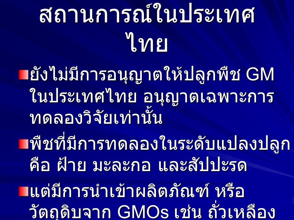 สถานการณ์ในประเทศ ไทย ยังไม่มีการอนุญาตให้ปลูกพืช GM ในประเทศไทย อนุญาตเฉพาะการ ทดลองวิจัยเท่านั้น พืชที่มีการทดลองในระดับแปลงปลูก คือ ฝ้าย มะละกอ และ
