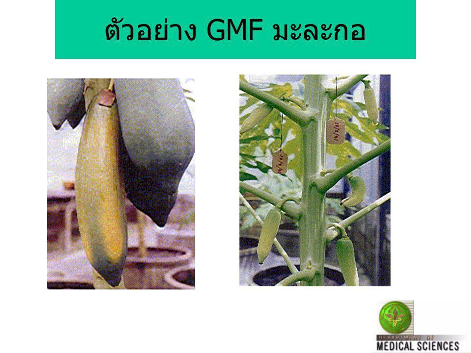 กระทรวงสาธารณสุข ดูแลความปลอดภัยอาหาร GMF ตาม พรบ. อาหาร ( สนอย.) Pre และ Post Marketing Surveillance ( อย. และ กรมวิทยาศาสตร์การแพทย์ ) ติดตามผลกระทบ
