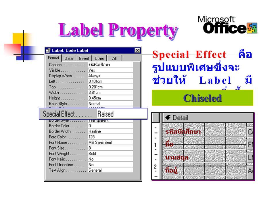 Label Property Special Effect Special Effect คือ รูปแบบพิเศษซึ่งจะ ช่วยให้ Label มี ความสวยงามยิ่งขึ้น FlatRaisedSunkenEtchedShadowedChiseled