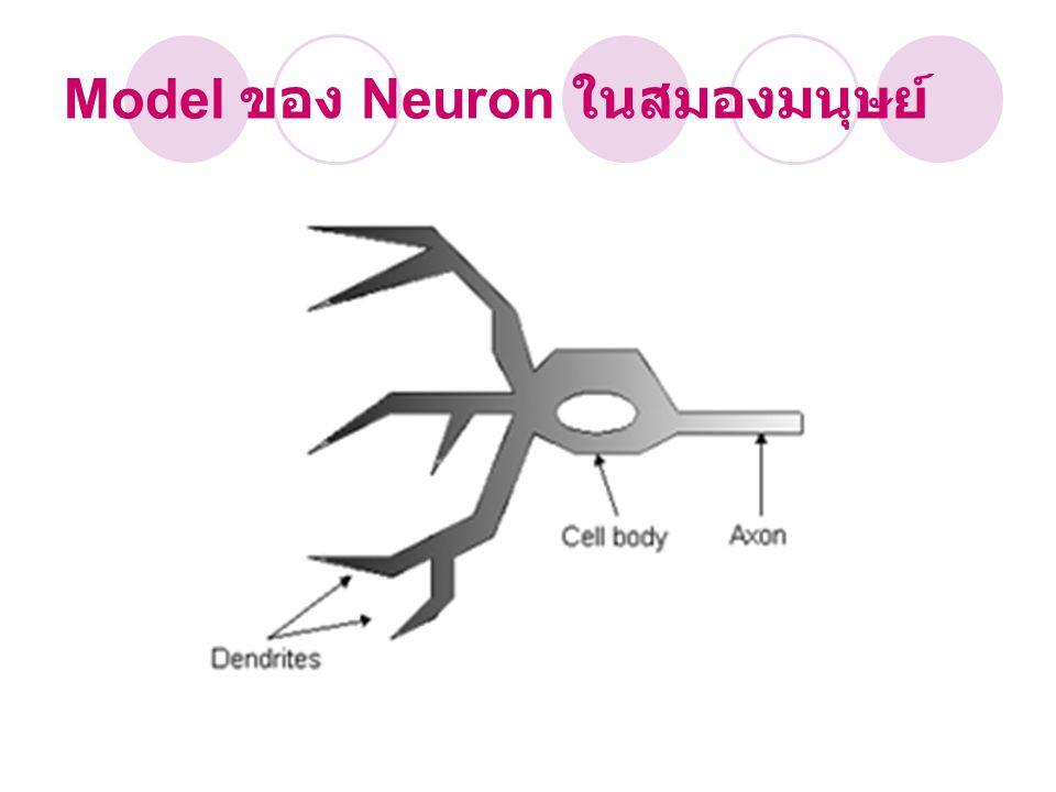 โครงสร้าง Neural Network input และ output weight เป็นตัวกำหนดน้ำหนักของ input threshold ค่าของ input แต่ละหน่วยเป็น ตัวกำหนดน้ำหนักรวมของ input ( มากเท่าใดจึง จะสามารถส่ง output ไปยัง neurons ตัวอื่นได้ ) neuron นำแต่ละหน่วยมาต่อกันให้ทำงาน ร่วมกัน