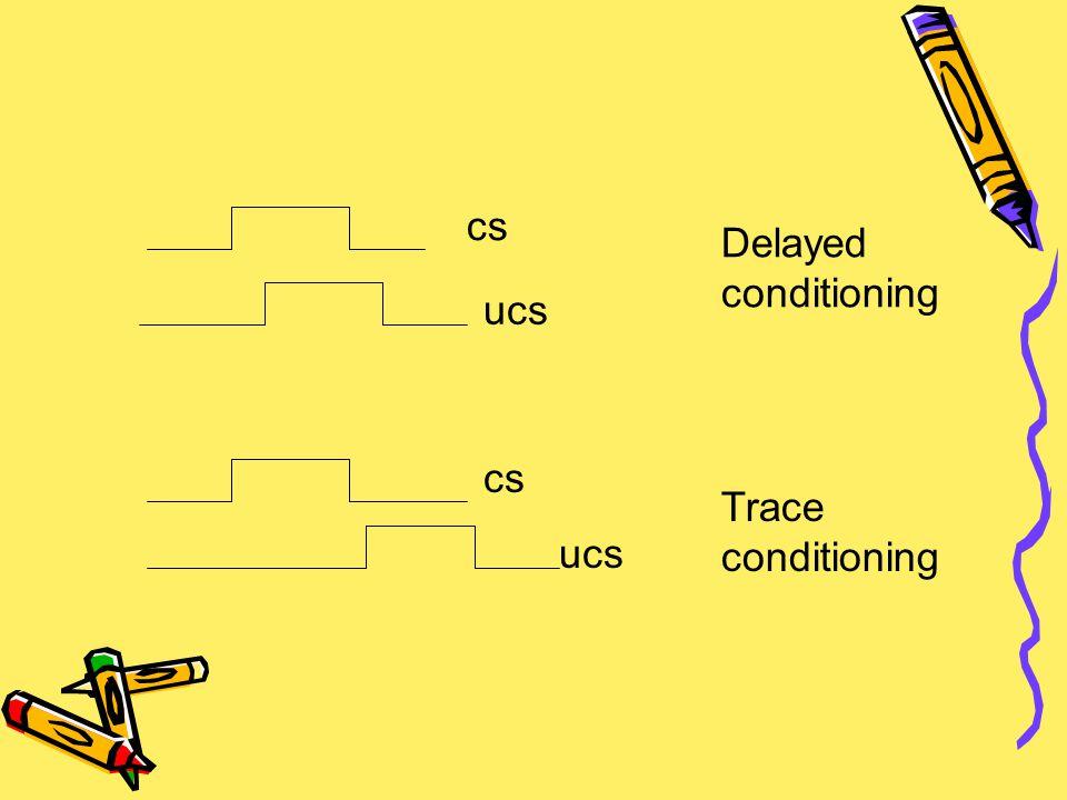 Delayed conditioning Trace conditioning cs ucs cs ucs
