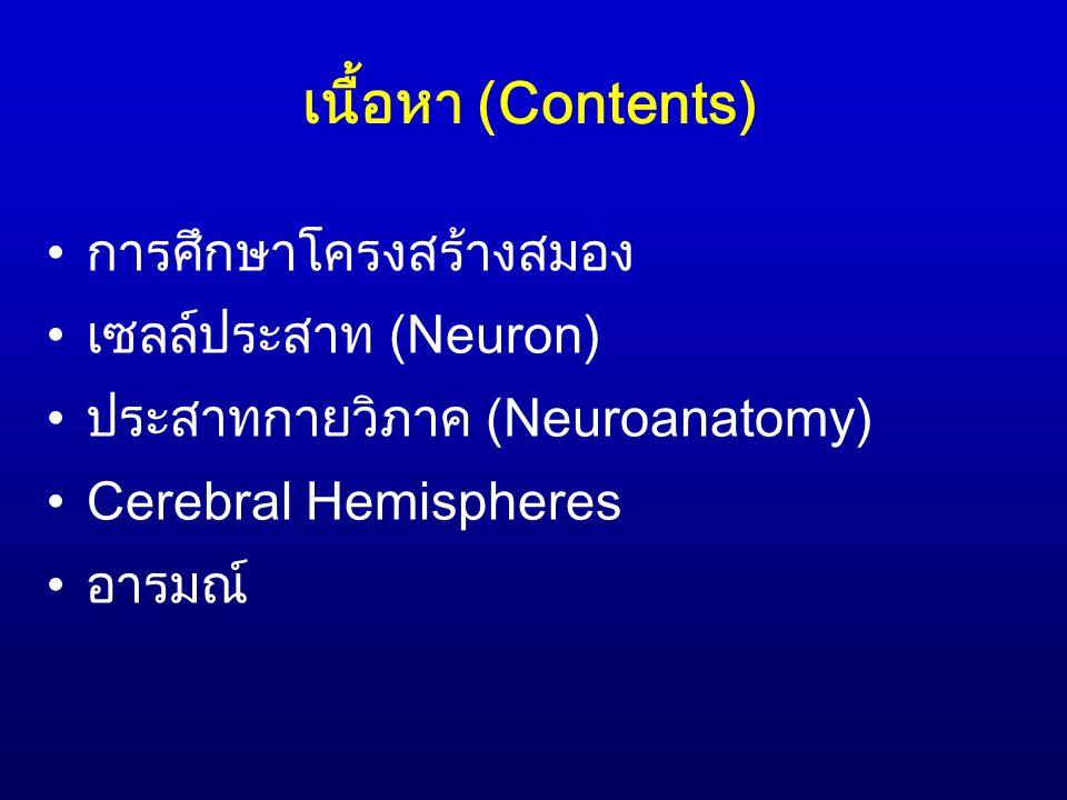 บทนำ (1) สมัยโบราณ:สภาพจิตใจและพฤติกรรมของมนุษย์ เป็นผลมาจากหัวใจและอวัยวะภายใน โดยเฉพาะ กระบังลม (diaphragm) โรค schizophrenia ซึ่ง มีรากศัพท์มาจากคำว่า schism + diaphragm = ความแตกแยกของจิตใจ Galen (ค.ศ.