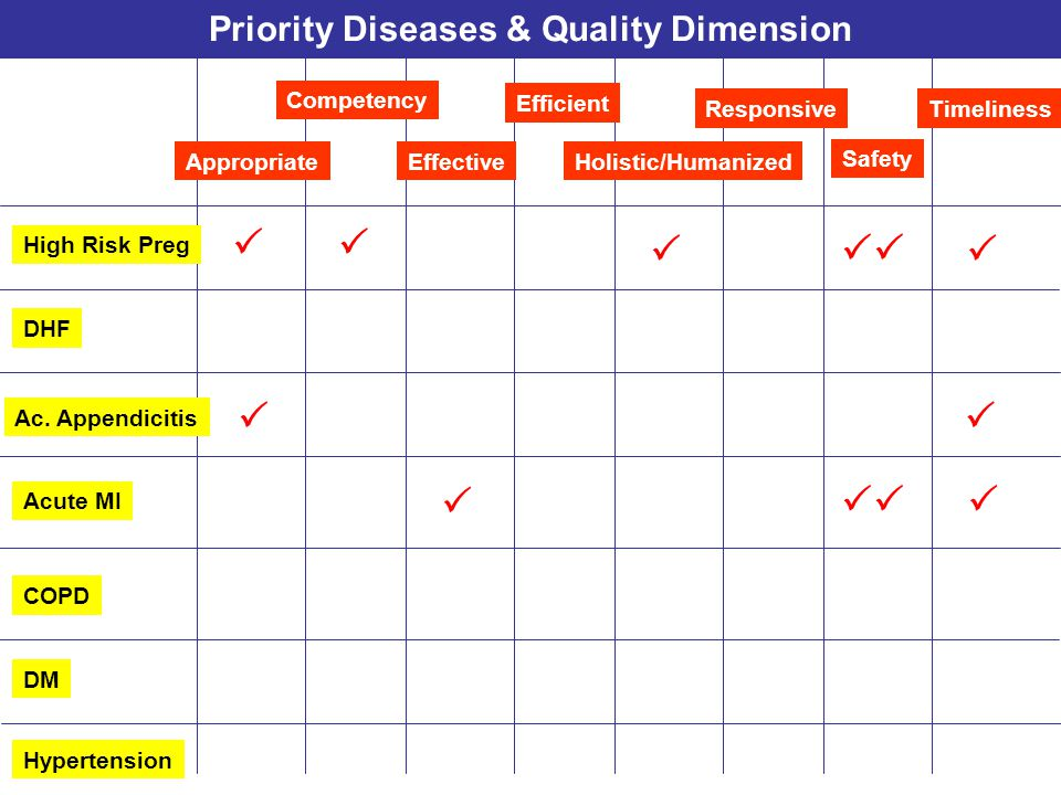 Priority Diseases & Quality Dimension Responsive Appropriate Competency Effective Safety Timeliness Holistic/Humanized Efficient Acute MI COPD DM Hype