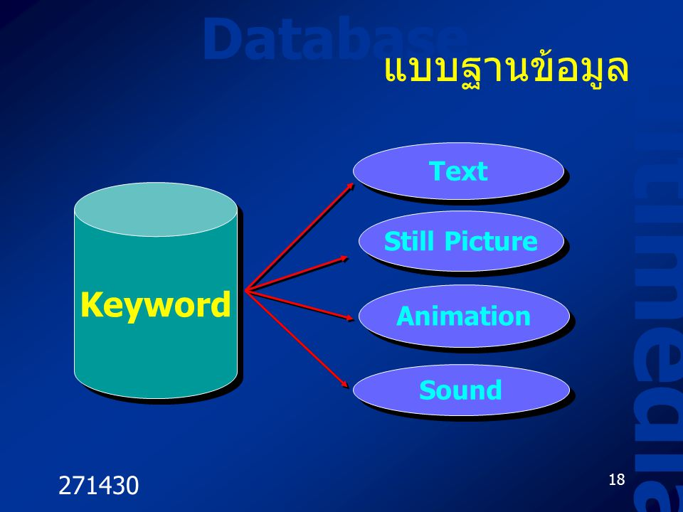 271430 18 Database Multimedia แบบฐานข้อมูล Keyword Text Still Picture Animation Sound