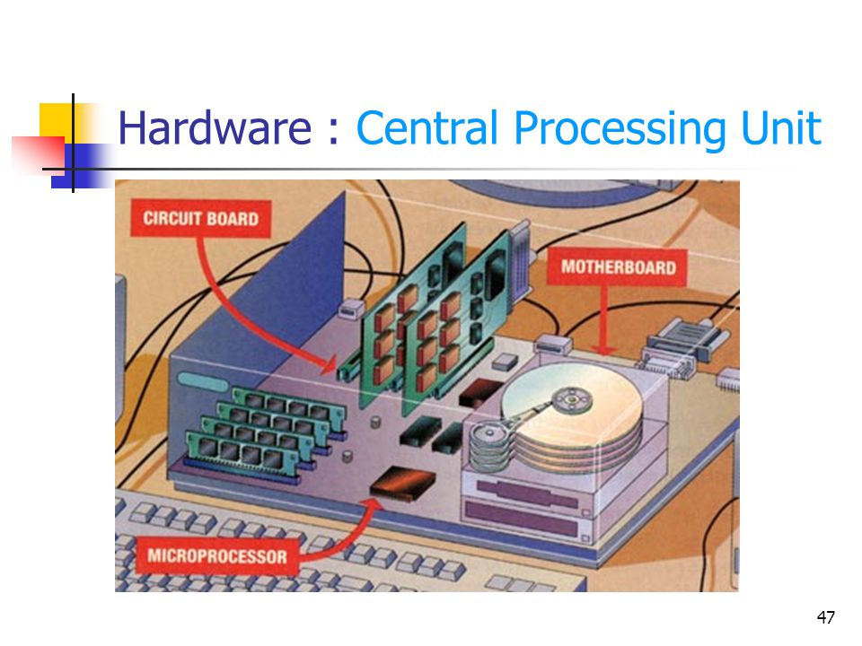 47 Hardware : Central Processing Unit