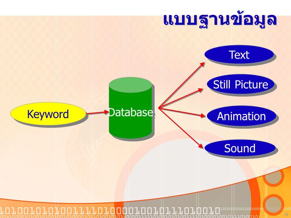 18 แบบฐานข้อมูล Database Text Still Picture Animation Sound Keyword