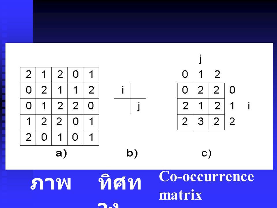 ภาพทิศท าง Co-occurrence matrix