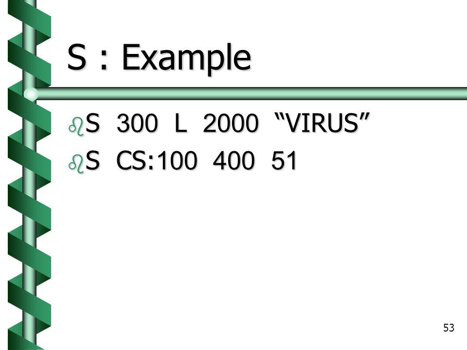 53 S : Example  S 300 L 2000 VIRUS  S CS:100 400 51
