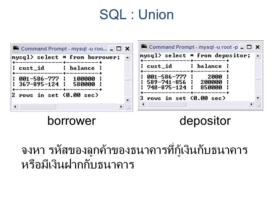 SQL : Union borrower depositor จงหา รหัสของลูกค้าของธนาคารที่กู้เงินกับธนาคาร หรือมีเงินฝากกับธนาคาร