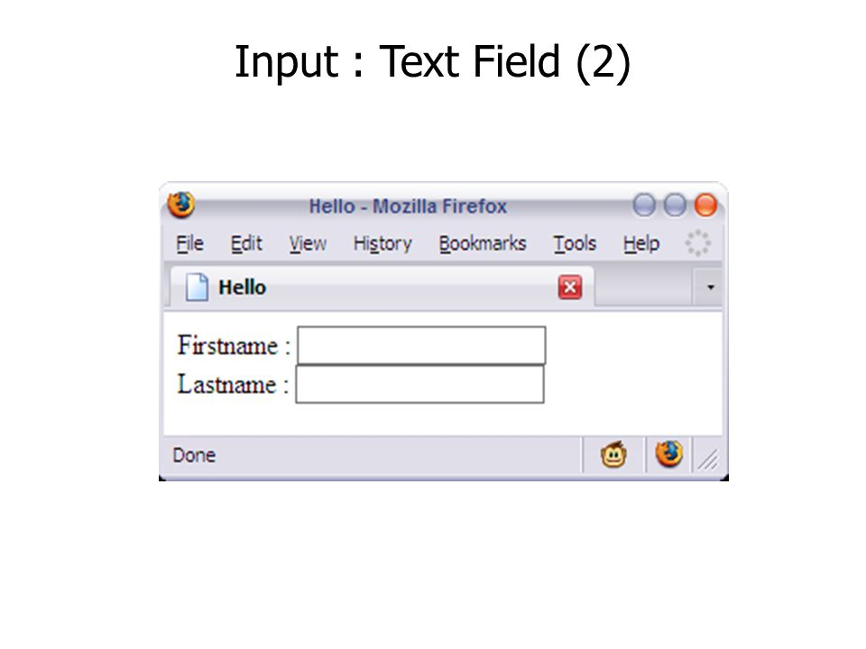 Input : Radio Buttons Male Female